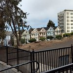 Photo de Painted Ladies