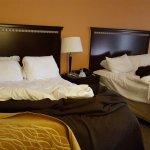 Bilde fra Comfort Inn & Suites Lincoln Talladega I-20