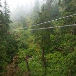 Foto de Alaska Canopy Adventures