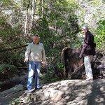 Fire Creek falls adjoining rocks aka Leather leaf falls