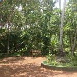 Photo de Dalmanuta Gardens - Ayurvedic Resort & Restaurant