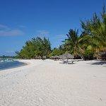 plage vue des bungalow