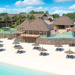 C Palmar Mauritius Foto