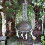 Photo of Tamatsukuriyu Shrine