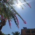 Photo of smartline Sunpark Garden Hotel