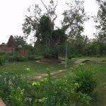 Photo de Mandore Gardens