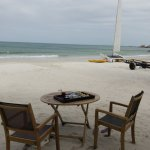 Complimentary afternoon tea and Catamaran ride