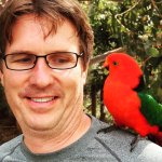 Wild birds (The King Parrot) on a Great Ocean Road Private Tour.