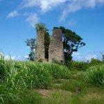 La route des moulins - Patrimoine de Marie-Galante