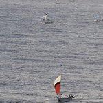 Flottille rentrant sur les plages au petit matin