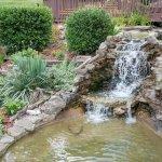 Waterfall in the flower garden