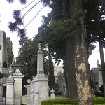 Photo de Recoleta
