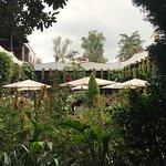 Foto de Restaurante Antiguo San Angel Inn
