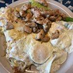 Gator & Eggs