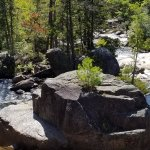 Baxter State Park Foto