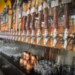 50 Craft Beers on Tap
