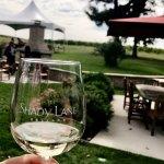 Outside by vineyard