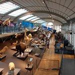 Foto di Museo di scienze naturali