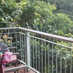Foto de Cockatoo Hill Retreat