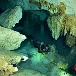 Photo of La Calypso Dive Center