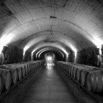 Walking through the caves of Spring Mountain Vineyard 🍇🍷❤️