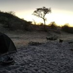 Sunset- Campsite