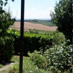 Photo of La Cantina in Collina