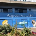 Photo de Aquarium of the Bay