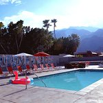 The Monroe Palm Springs Photo