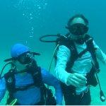Billede af Octopus Diving