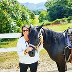 Foto de Farm by the River Bed and Breakfast with Stables