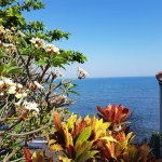 Villa Agung Beach Inn Photo