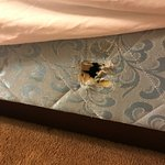 hole in bed