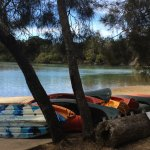 Boambee Creek - the canoes are for resort guests to use.