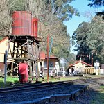 Puffing Billy Railway Foto