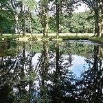 Wasserschloss Mellenthin Foto