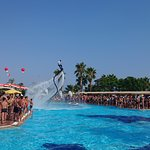 Photo of Maritim Pine Beach Resort