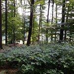 Photo of Camping Birkelt