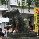 Ecco la statua