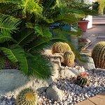 Photo de Hotel Terme Royal Palm