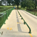 Crossing bridge - MacRitchie Reservoir Trail