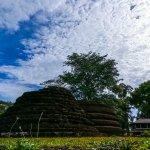 Vehera Kanda Ruins