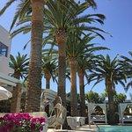 Photo of Drossia Palms Hotel Studios