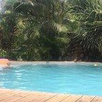 Photo of Monkey Lodge Panama