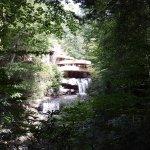 Fallingwater صورة فوتوغرافية