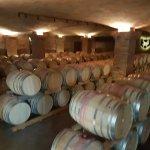 Photo of La Motte Wine Estate