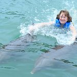 Two Dolphin Ride