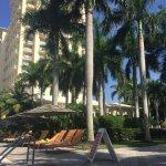 Hyatt Regency Coconut Point Resort and Spa Foto
