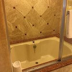soaking tub with shower - very difficult entry into tub - not for older people