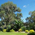 Coastal Georgia Botanical Gardens
